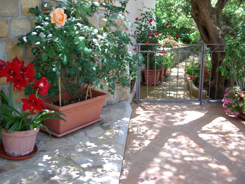 Jardín Alquiler Villa 54358 Capo d'Orlando