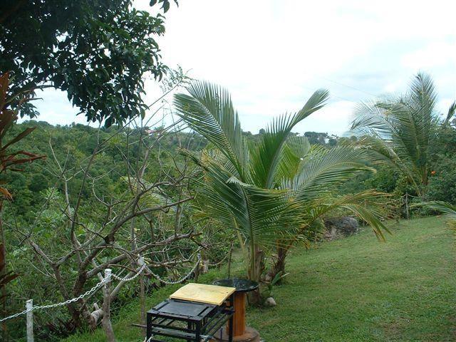 Vistas desde el alojamiento Alquiler Bungalow 8003 Gosier (Guadalupe)