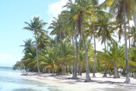 Playa Alquiler Casa rural 71841 Sainte Anne (Guadalupe)