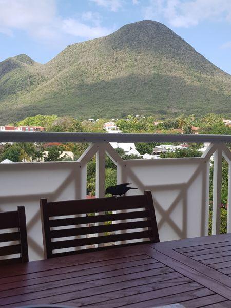 Vistas desde la terraza Alquiler Apartamento 84275 Le Diamant