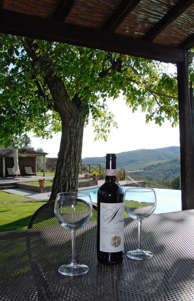 Vistas desde la terraza Alquiler Casa rural 65957 Siena