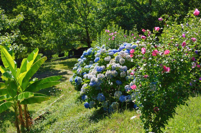Otras vistas Alquiler Chalet 69281 Biarritz