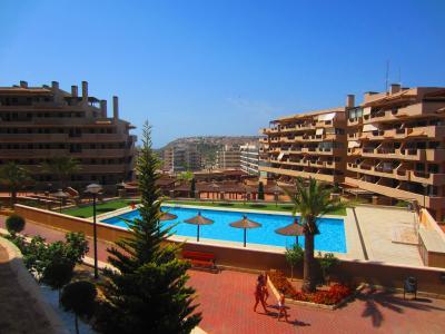 Piscina Alquiler Apartamento 75868 Alicante