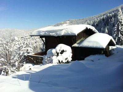 Vistas exteriores del alojamiento Alquiler Chalet 82375 Les Carroz d'Araches