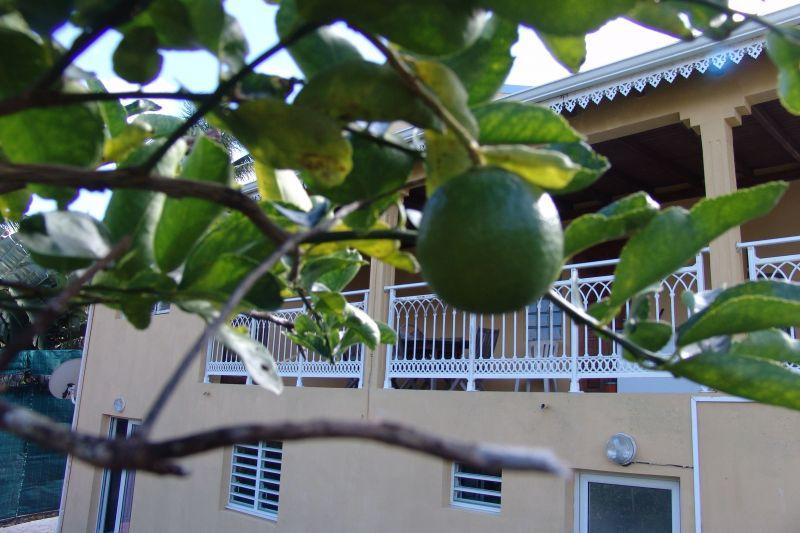 Vistas exteriores del alojamiento Alquiler Apartamento 117365 Goyave