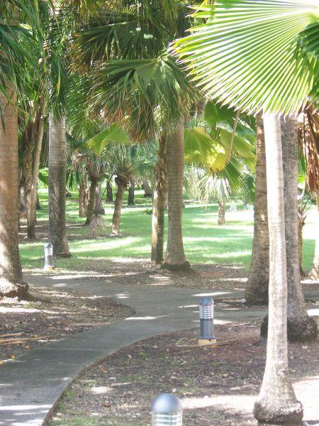 Jardín Alquiler Estudio 67258 Saint Francois