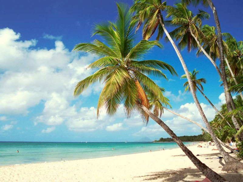 Piscina Alquiler Apartamento 67787 Sainte Anne (Martinique)