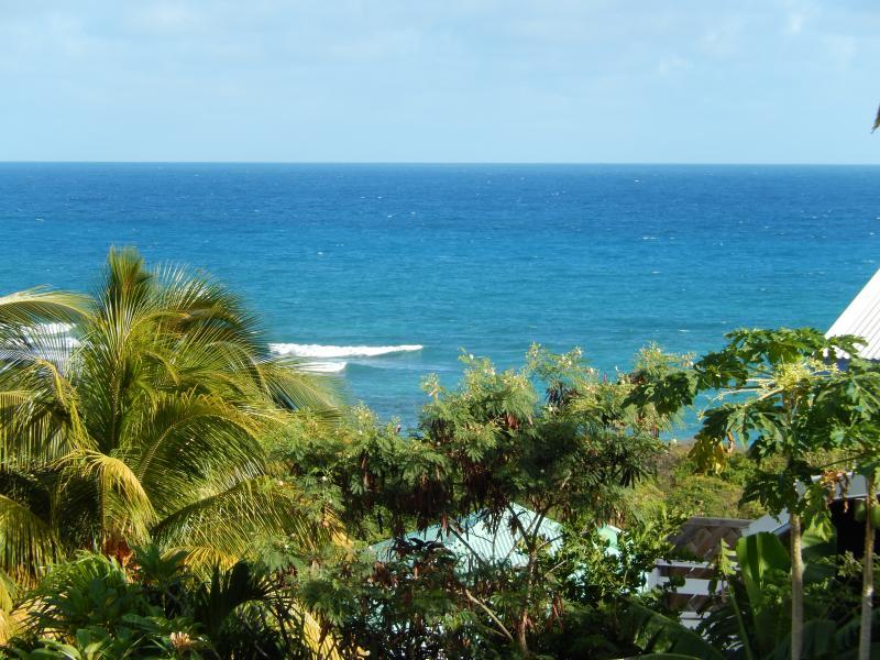 Vistas desde la terraza Alquiler Apartamento 82066 Saint Francois