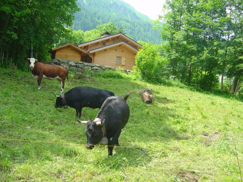 Alquiler Chalet 1412 Chamonix Mont-Blanc