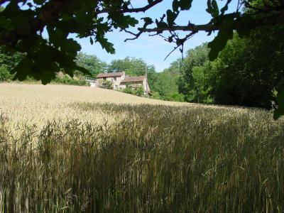 Vistas exteriores del alojamiento Alquiler Casa rural 21229 Villefranche de Rouergue