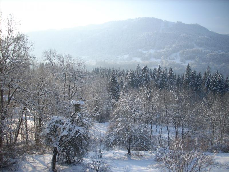 Vistas desde el alojamiento Alquiler Apartamento 28936 Samoëns