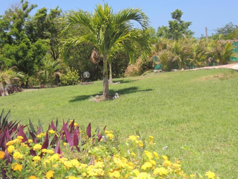 Jardín Alquiler Casa rural 29739 Bouillante