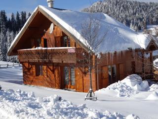 Vistas exteriores del alojamiento Alquiler Chalet 38561 Villard de Lans - Corrençon en Vercors
