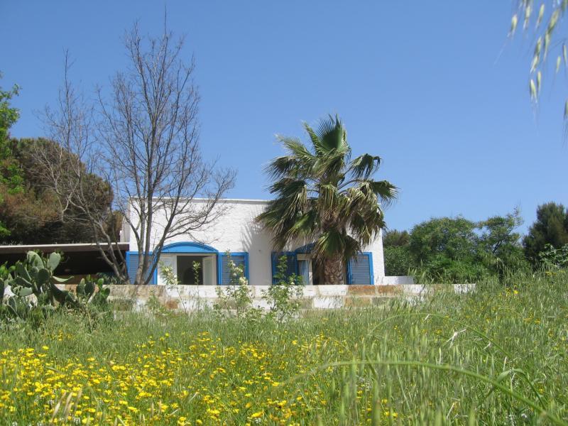 Alquiler Casa 45348 Pescoluse