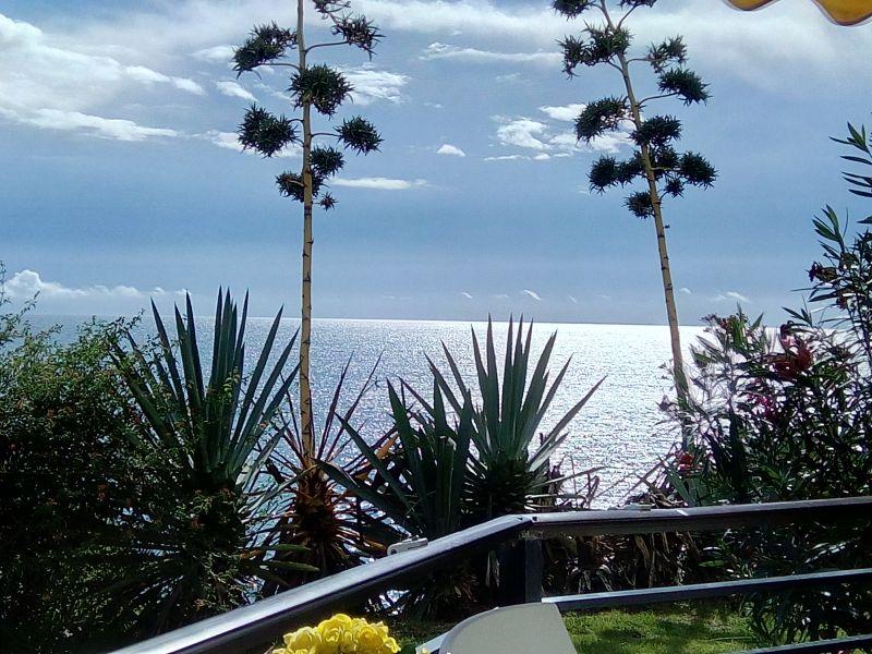 Vistas desde la terraza Alquiler Estudio 45979 Torremolinos