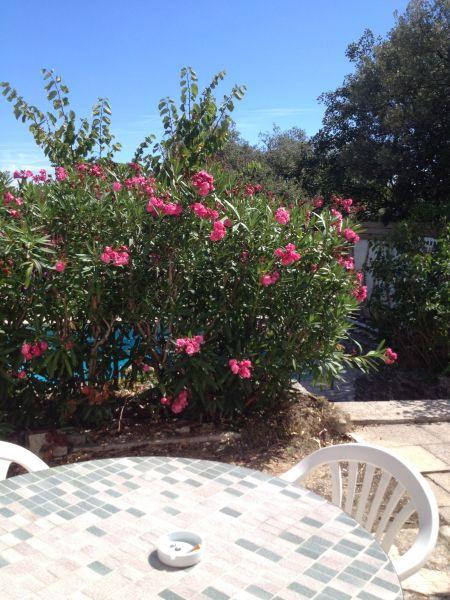 Vistas desde la terraza Alquiler Casa 48095 Cassis