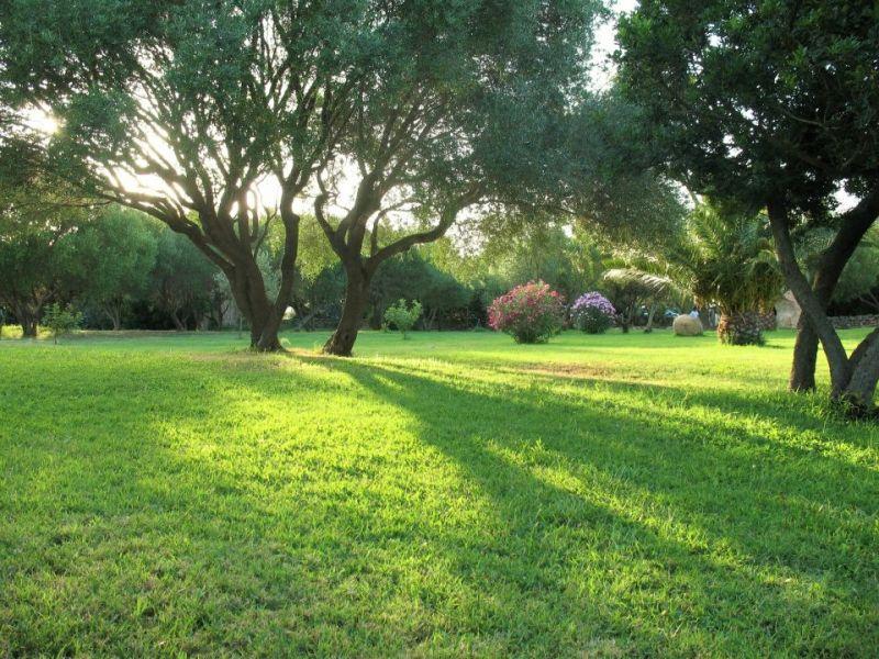 Jardín Alquiler Apartamento 53727 Porto Rotondo