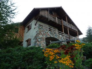 Vistas exteriores del alojamiento Alquiler Chalet 54265 Alpe d'Huez