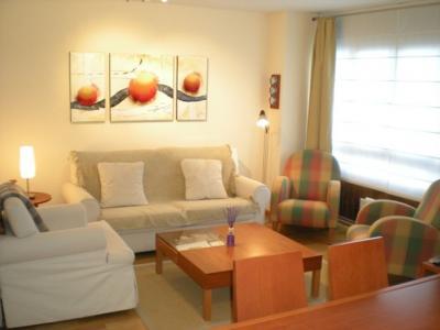 Alquiler Apartamento 58582 Formigal