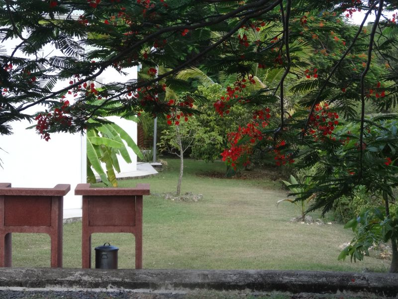 Jardín Alquiler Casa rural 60311 Sainte Anne (Guadalupe)
