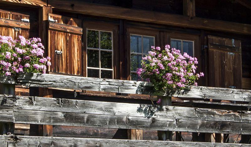 Alquiler Chalet 706 Chamonix Mont-Blanc