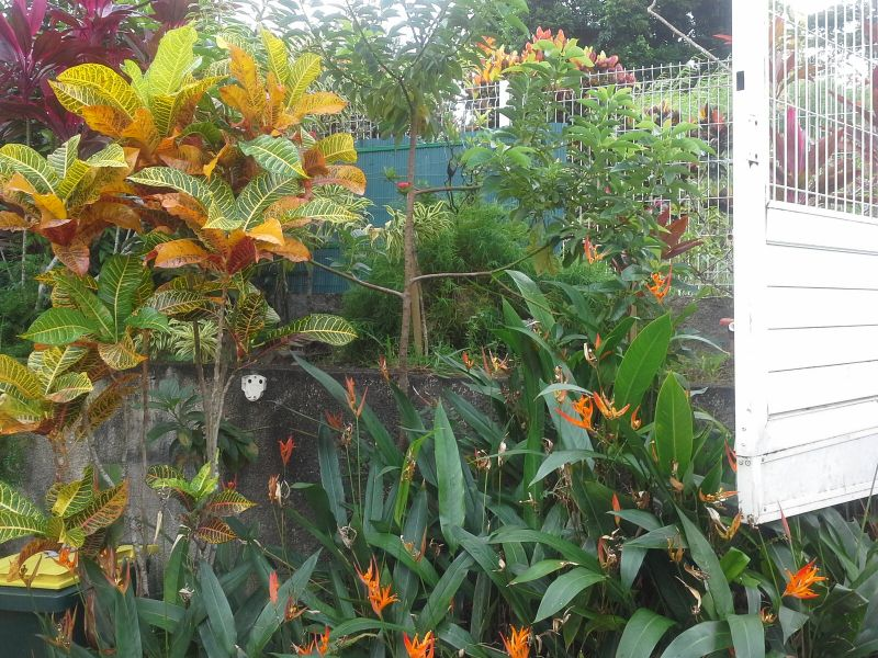 Jardín Alquiler Apartamento 8149 Le Robert