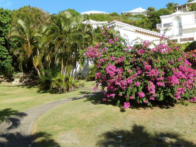 Jardín Alquiler Apartamento 90989 Saint Francois