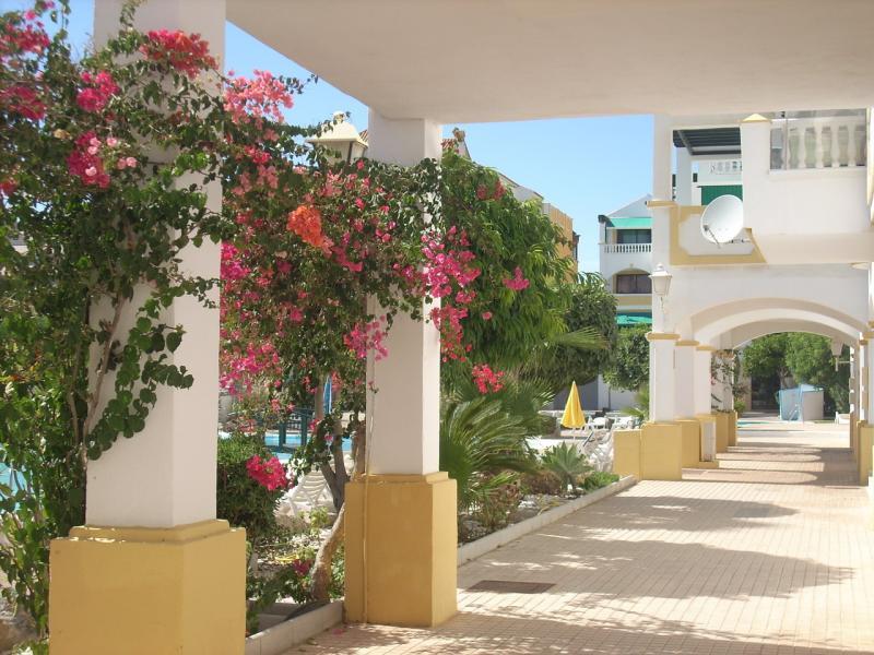 Entrada Alquiler Apartamento 73121 Roquetas de Mar