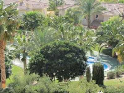 Alquiler Apartamento 109179 Alicante