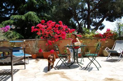 Jardín Alquiler Estudio 112086 Roma
