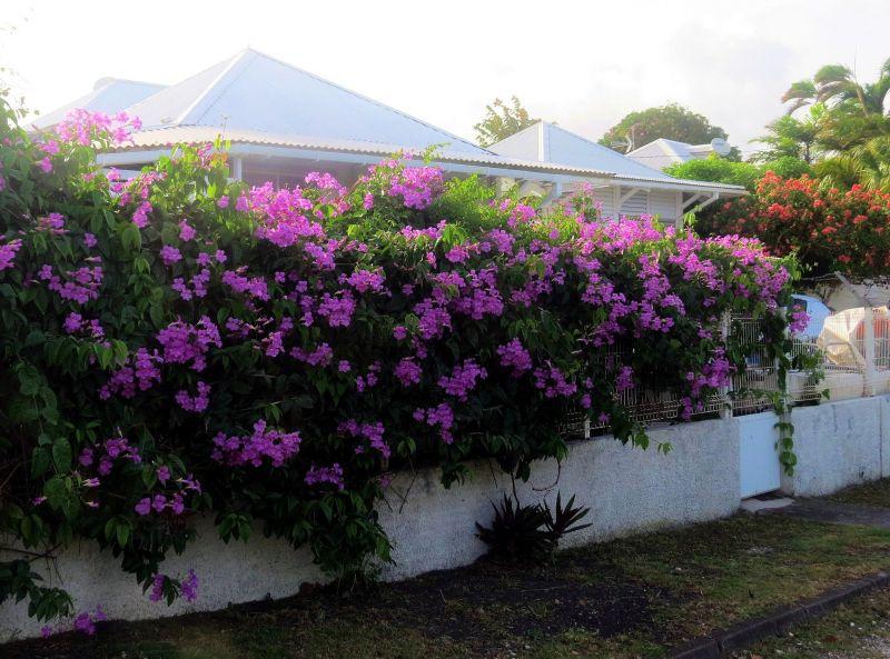 Vistas exteriores del alojamiento Alquiler Bungalow 117399 Sainte Anne (Guadalupe)