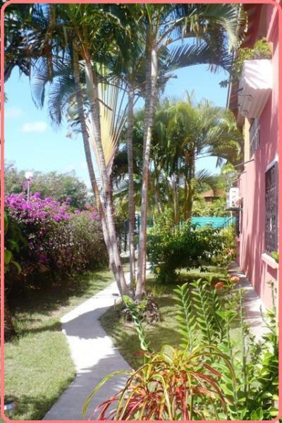 Jardín Alquiler Casa rural 71841 Sainte Anne (Guadalupe)