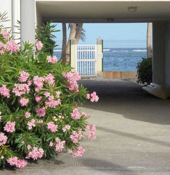 Jardín Alquiler Apartamento 73124 Sainte Anne (Guadalupe)