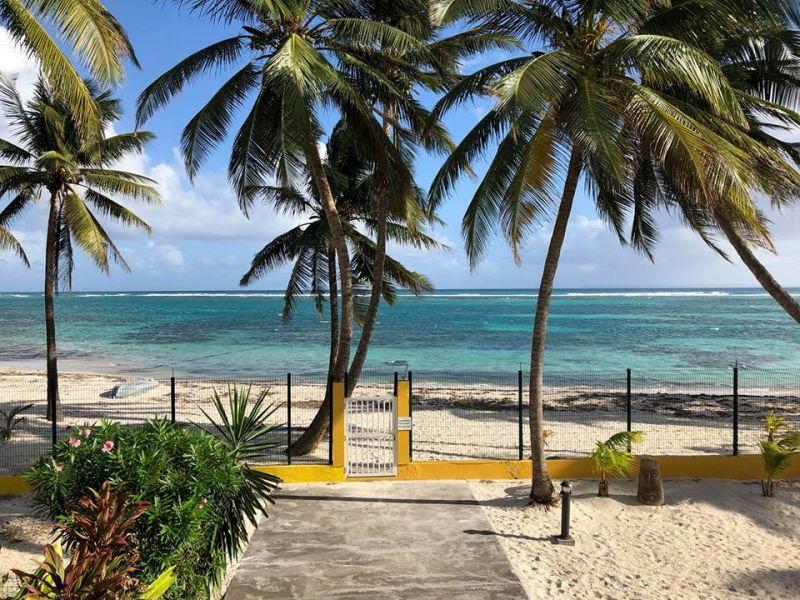 Playa Alquiler Apartamento 73124 Sainte Anne (Guadalupe)