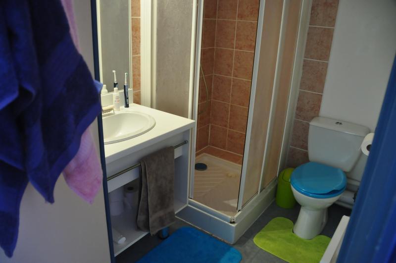 cuarto de baño Alquiler Apartamento 73582 Saint François Longchamp