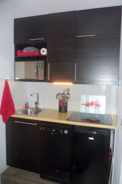 Kitchenette Alquiler Apartamento 87874 Risoul 1850