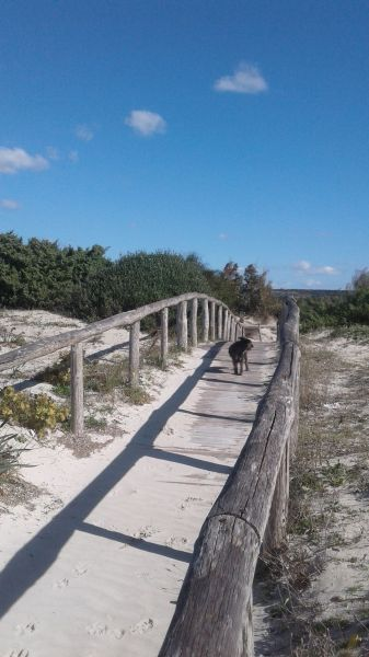 Playa Alquiler Villa 104522 Ugento - Torre San Giovanni