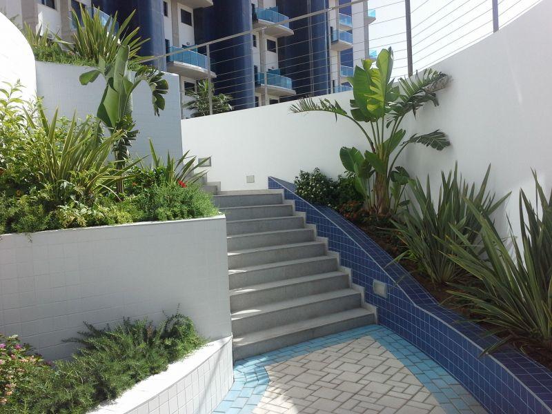 Entrada Alquiler Apartamento 118656 Torrevieja