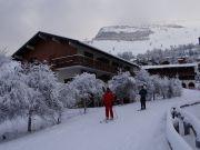 Apartamento en residencia Les 2 Alpes 2 a 4 personas