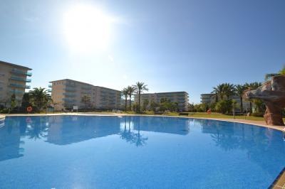 Piscina Alquiler Apartamento 70004 La Pineda