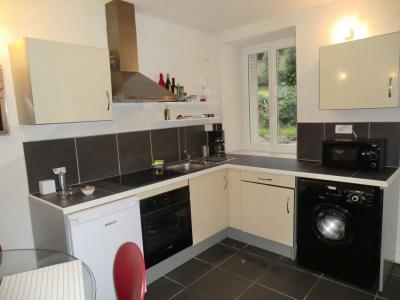 Kitchenette Alquiler Apartamento 75483 Ax Les Thermes