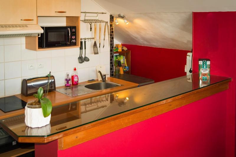 Cocina americana Alquiler Apartamento 85760 Saint Leu