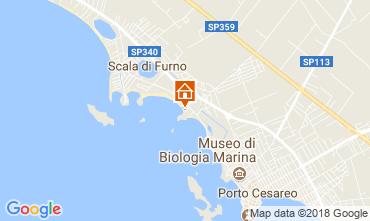 Mapa Porto Cesareo Apartamento 113516